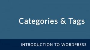 WordPress Categories & Tags